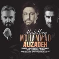 دانلود آهنگ جدید محمد علیزاده مثل مرگ