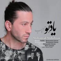 دانلود آهنگ جدید محمد محبیان یاد تو