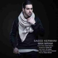 دانلود آهنگ جدید سعید کرمانی من میرم