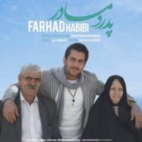 دانلود آهنگ جدید فرهاد حبیبی پدر و مادر