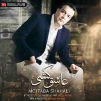 دانلود آهنگ جدید مجتبی شاه علی عاشق کشی