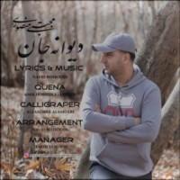 دانلود آهنگ جدید مجتبی منصوری دیوانه جان