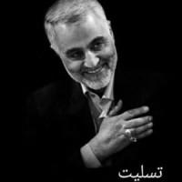 دانلود آهنگ جدید بهزاد بختیاری سردار سلیمانی