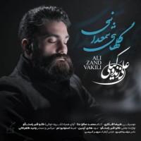 دانلود آهنگ جدید علی زند وکیلی گلهای شمعدانی