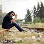دانلود آهنگ جدید محسن یاحقی دیوونه بازی