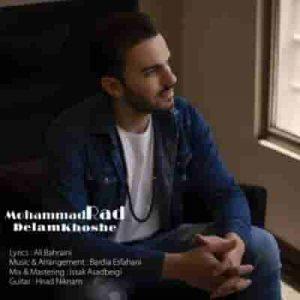 دانلود آهنگ جدید محمد راد دلم خوشه