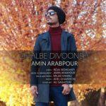 دانلود آهنگ جدید امین عرب پور قلب دیوونه