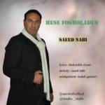 دانلود آهنگ جدید سعید نبی حس فوق العاده