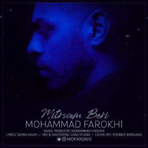 دانلود آهنگ جدید محمد فرخی میترسم بری