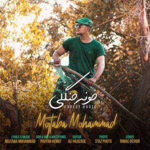 دانلود آهنگ جدید مجتبی محمد خونه جنگلی
